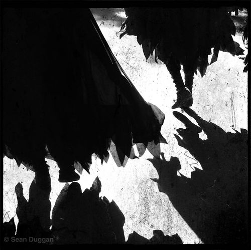 Encounters_with_Shadows_iP4-w